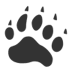 Brown Bear Software logo